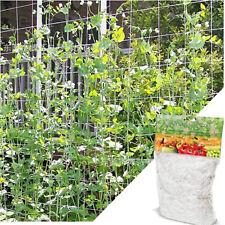 Heavy Duty Garden Trellis Netting Plant Support Garden Fence Mesh Net 5ftx15ft