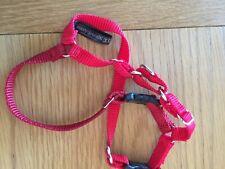 PetSafe Easy Walk Harness Extra Small