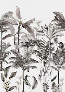 Rasch Papier Peint 539189 Club Botanique Singe Jungle Noir Blanc Mural non-Tissé