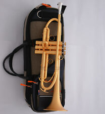 Professional Customized Satin Gold Trumpet horn B-Flat Monel Piston New Case