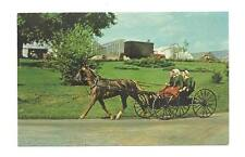 LANCASTER PA Amish Girls in Open Horse & Buggy Postcard
