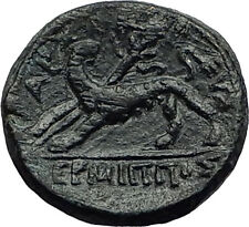 PHILADELPHIA LYDIA 1stCenBC Dionysus Panther Authentic Ancient Greek Coin i59302