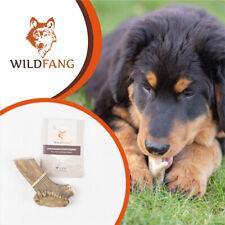 Wildfang® Rothirsch Geweih für Hunde, Natürlicher Kauknochen, Zahnpflege