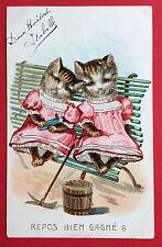 AK KATZE 1905 Katzen in Menschengestalt auf der Bank ( 7562