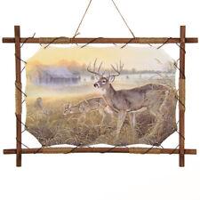 "22""x 16"" Deer Buck Farm Meadow Dream Catcher Wall Hang Decor Feathers Wood Frame"