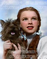 JUDY GARLAND as DOROTHY and TOTO #1 - Oz  8x10 COLOR Photo by CHIP SPRINGER