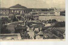 Weston-super-Mare Winter Gardens  _ Old Unposted Postcard