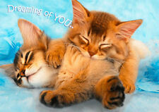 CAT - DREAMING OF YOU - 3D Lenticular Motion Postcard Greeting Card