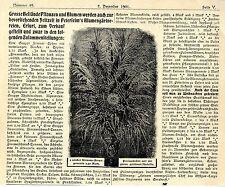 M. Petersheim Erfurt Pflanzen und Blumen Hoflieferant der Kaiserin Friedrich1901