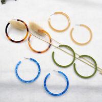 2pc Women Acrylic Tortoise Long Earring Round Circle Resin Hoop Earrings Jewelry