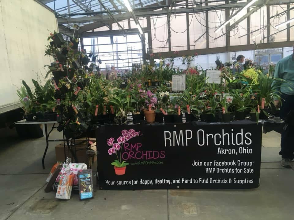 RMP ORCHIDS