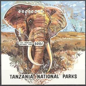 (178476) Elephant, Tanzania