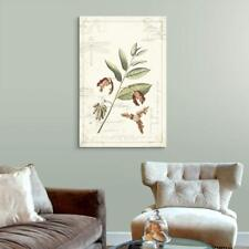 Wall26 - Vintage Style Leaves and Seeds Gallery - CVS - 16x24 inches