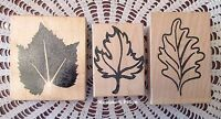 Lot Of 3 Fall Leaves Leaf Stamp Mounted Rubber Brand New