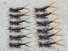 12 Artflies Realistic Salmonfly Nymph Assortment, Dark Brown Patterns, Hook #10