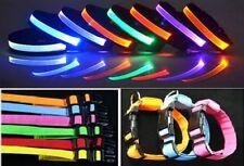 Hundegröße XL LED-Leucht -/Sicherheitshalsbänder