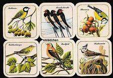 # GLANZBILDER # DDR , Original,   RB5 14714, Vögel, sehr selten