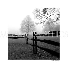 "SILVERMAN HAROLD - FENCE IN THE MIST - ART PRINT POSTER 16"" X 16""      (1581)"