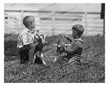 Vintage photo-Little boys with baby goats-8x10 in.