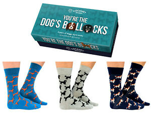MENS NOVELTY SOCKS 3 PAIRS OF YOUR THE DOGS BOLLOCKS MEN UK 6 - 11 GIFT BOXED