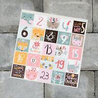 25 x Advent Calendar Stickers -  Christmas Countdown Vinyl Decals - SKU6294