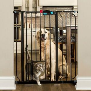 Carlson Extra Tall Walk Through Pet Gate with Small Pet Door, Includes 4-Inch Ex