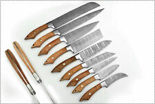 EST Professional Custom Made Damascus Steel 9Pcs Kitchen Knives Set-103-9-Chenar