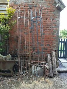 Victorian metal Tree Guard park land wrought iron 8ft height