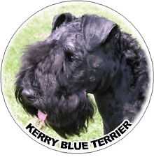 2 Kerry Blue Terrier Car Stickers By Starprint