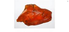 Natur Roh Bernstein Raw Amber 49,91 Gr