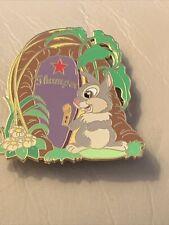 Disney 2004 Auction P.I.N.S.Dressing Room Door -Thumper Le 1000 Pin-Pins