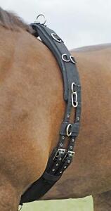 Busse Equine Training Roller Profi-Soft Horse and Pony Sizes