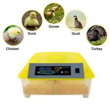 56 Egg Poultry Incubator Digital Hatcher Turning Automatic Temperature Control