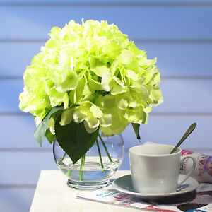 Silk Hydrangea Artificial Flowers Arrangement Centerpiece Glass Vase Faux Water