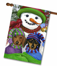 "Precious Pet Garden Flag - Dachshund Frosty 12"" x 18"" ~ Charity!"