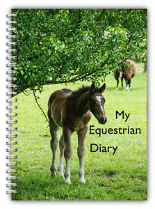 A5 EQUESTRIAN DIARY HORSE & RIDER COMPETITION LOGBOOK DIARY 100 PAGES BAY FOAL