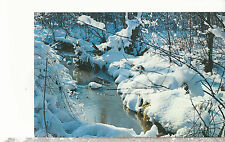 A Sparkling Brook in Winter  1955 Mailed from Clam Lake WI Chrome Postcard 1257