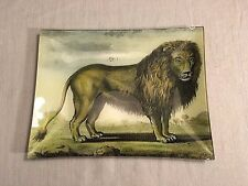 "John Derian Signed Decoupage 10""x13"" Rectangular Plate Tray Lion"