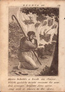 1831 engraving .scripture history - moses beholds a bush on flame !