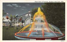 Buckeye Lake Park Ohio 1940s Postcard Amusement Park Fountain Roller Coaster
