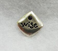 Lapel Pin Inspiration Purple rhinestone Silver Tone Wise Small Tac Brooch