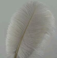 10pcs Ostrich Feathers 12-14inch(30-35cm) for Wedding Decoration USA seller
