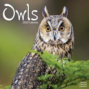 Owls Calendar 2022 Bird Wall Calendar 15% OFF MULTI ORDERS!