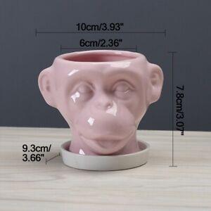 Flower Ceramic Pots Crafts Statue Miniature Monkey Animal Home Room Table Decor