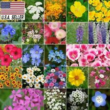 500++ SEEDS COASTAL CALIFORNIA WILDFLOWER  MIX 23 Species of Wildflower Seeds