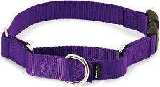Petsafe Martingale collar, quick snap buckle, new, petite, deep purple