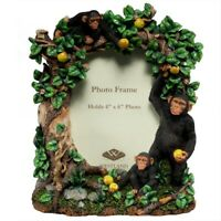 Chimpanzees Family Picture Frame
