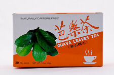 5 BOXES 100% NATURAL GUAVA LEAVES TEA 100 TEABAGS FAST SHIPPING!