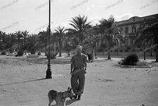 Messina - 1943-Sicilia-ITALIA-Luftwaffe - Wehrmacht-cani leader - 1