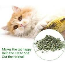 5 Pcs Realistic Interactive Fish Cat Kicker Crazy Pet Toy Gift Catnip Toys